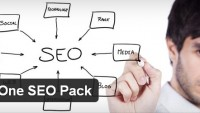 WordPress All in One Seo Pack